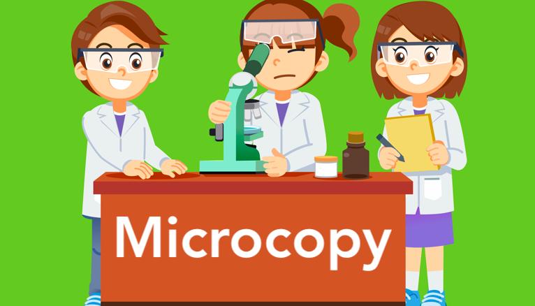 los microcopy contenidos